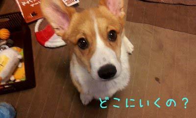 2012_02_21_08_14_55.jpg