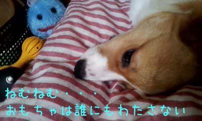 2012_02_21_12_39_15.jpg