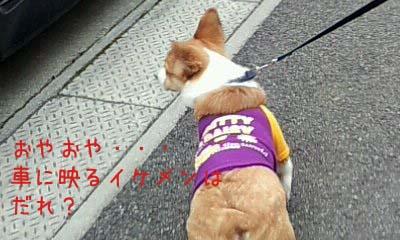 2012_02_22_13_18_17.jpg