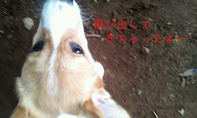 2012_02_22_13_45_45.jpg