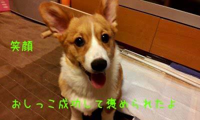 2012_02_29_20_28_33.jpg