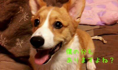 2012_03_02_19_28_21.jpg