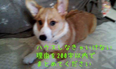 2012_03_04_09_23_14.jpg