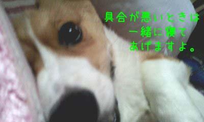 2012_03_05_08_19_30.jpg