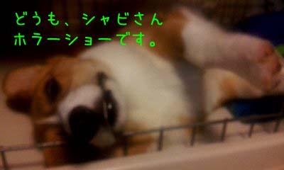 2012_03_07_09_29_48.jpg