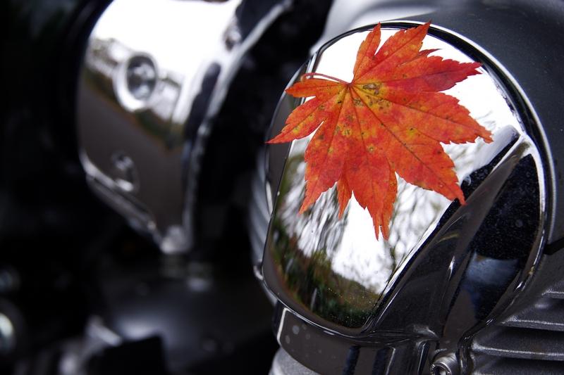 Image00012s_20111019233237.jpg