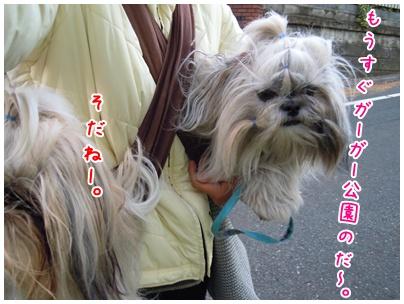 2010-12-05-04.jpg
