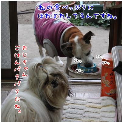 2010-12-06-02.jpg