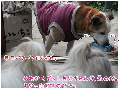 2010-12-07-03.jpg