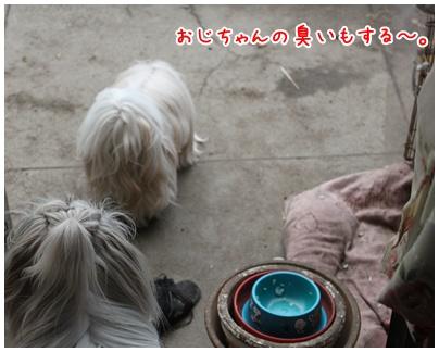 2010-12-08-04.jpg