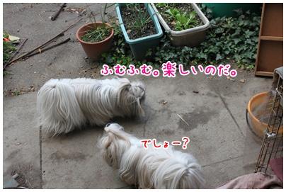 2010-12-11-01.jpg