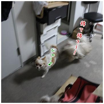 2010-12-14-01.jpg