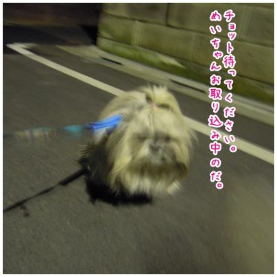 2010-12-27-03.jpg