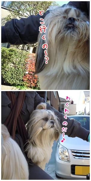 2010-12-28-02.jpg