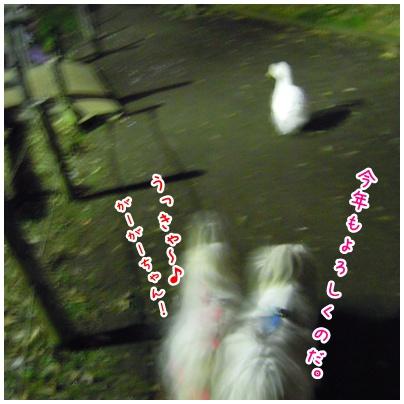 2011-01-05-02.jpg