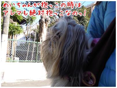 2011-01-11-05.jpg