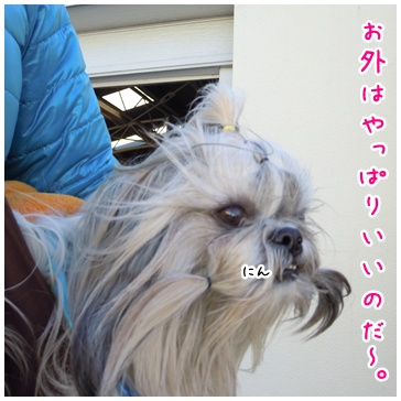 2011-01-11-06.jpg