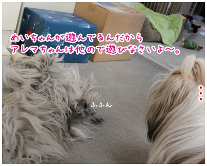 2011-01-13-04.jpg