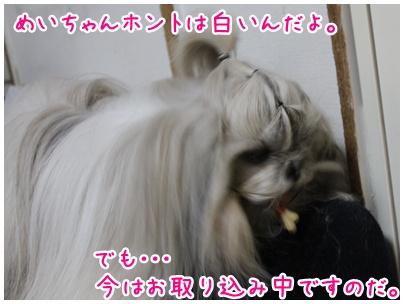 2011-01-14-02.jpg
