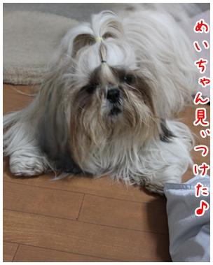 2011-01-20-05_20110119215837.jpg