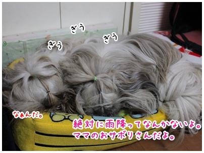 2011-01-21-03.jpg
