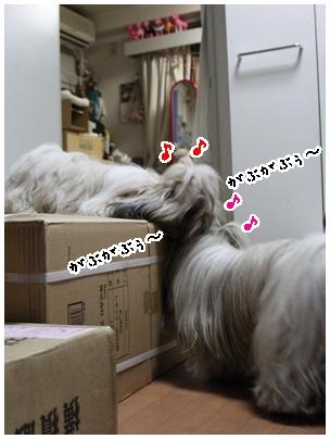 2011-01-22-05.jpg