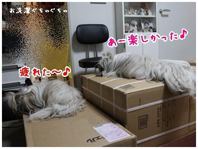 2011-01-22-06.jpg