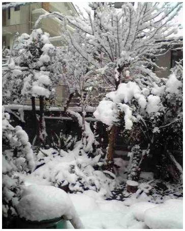 2011-01-23-01.jpg