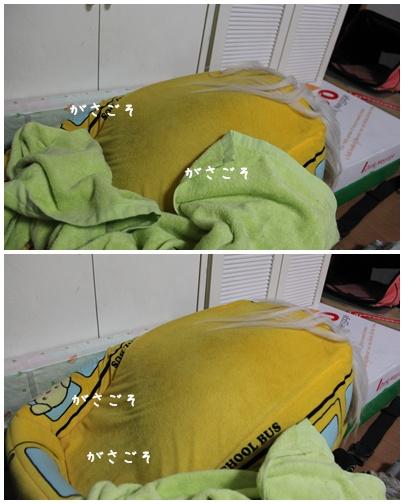 2011-01-25-02.jpg