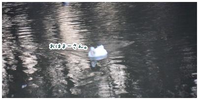2011-01-28-03.jpg
