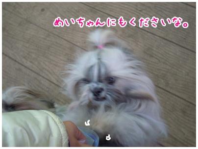 2011-01-28-07.jpg