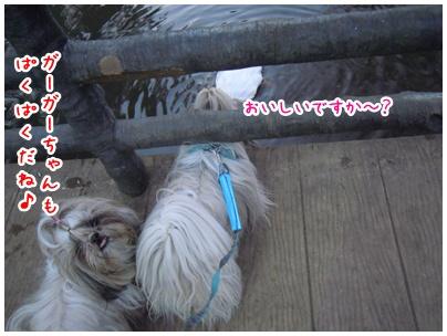 2011-01-28-09.jpg