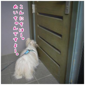 2011-02-06-03.jpg