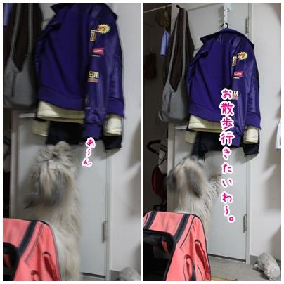 2011-02-09-01.jpg