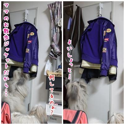 2011-02-09-02.jpg