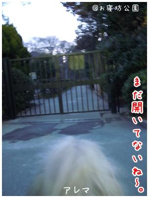 2011-02-10-01.jpg