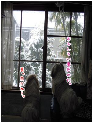 2011-02-23-02.jpg