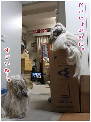 2011-03-02-02.jpg