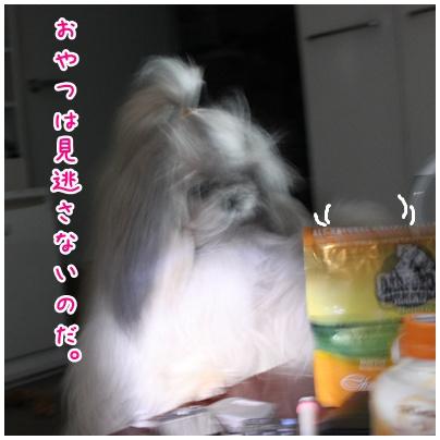2011-03-20-03.jpg