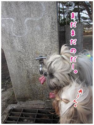 2011-03-23-05.jpg