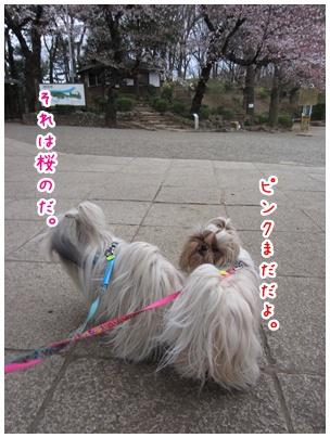 2011-04-03-01.jpg