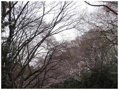 2011-04-03-03.jpg