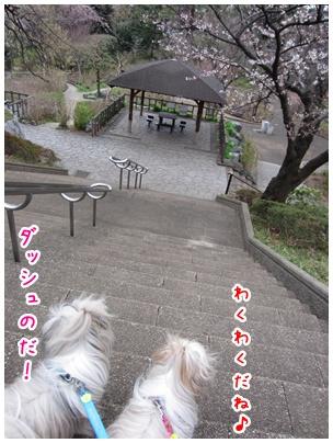 2011-04-03-06.jpg