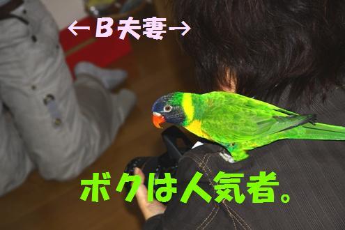 コピー ~ IMG_6790