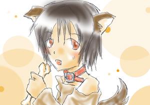 hori_ken