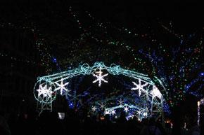 2010-12-16g.jpg