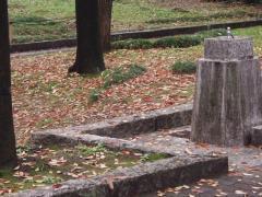 2007-11-14-5.jpg