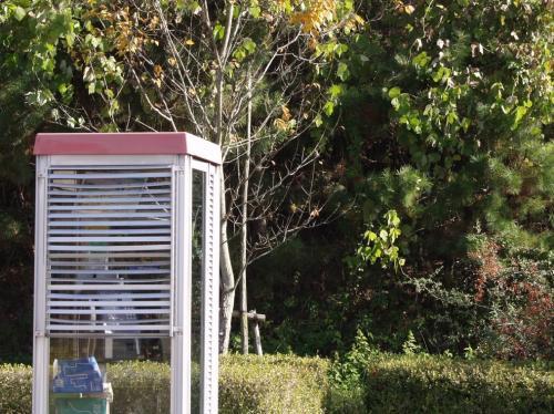 2007-11-26-07_20071130153446.jpg