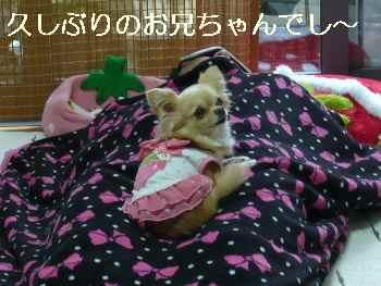 blog2011052901.jpg