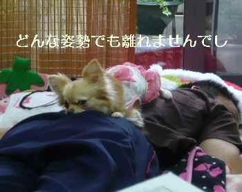 blog2011052902.jpg